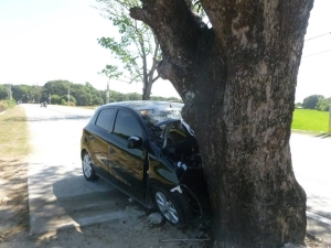 A car with four persons inside crashed into mango tree in the middle of the highways along Urdaneta City, on February 1.  The tree, which has been given permit for felling by the Deparment of Environment and Natural Resources, was spared when the controversy on Manila North Road cutting of trees erupted.