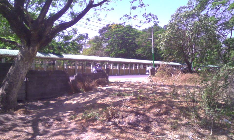 Image result for BAYAMBANG CENTRAL SCHOOL